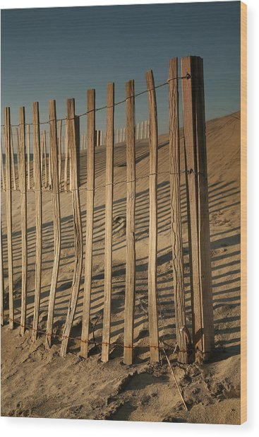 Dune Fences Early Morning II Wood Print by Steven Ainsworth