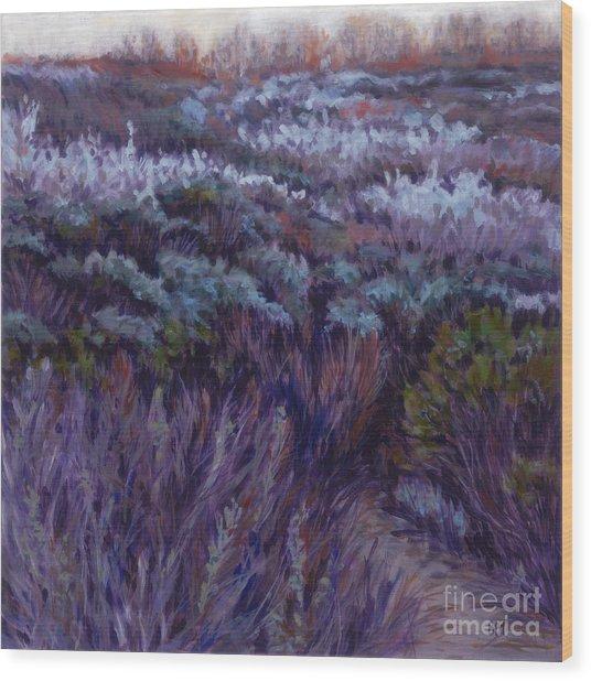 Dune Lupine Wood Print