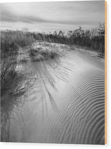 Dune Ripple Wood Print by James Rasmusson