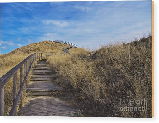 Dune With A View Wood Print