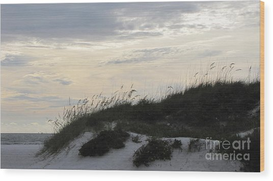 Dunes At Dusk Wood Print by Gayle Melges