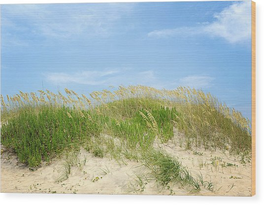 Dunes In Rodanthe Wood Print