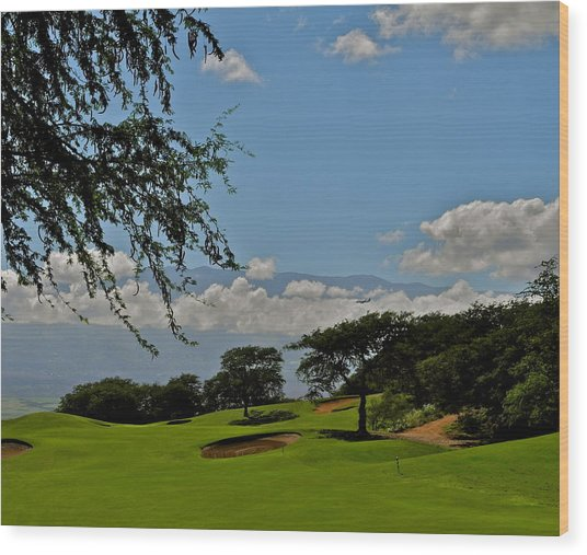 Dunes Of Maui Lani 14th Fairway Wood Print