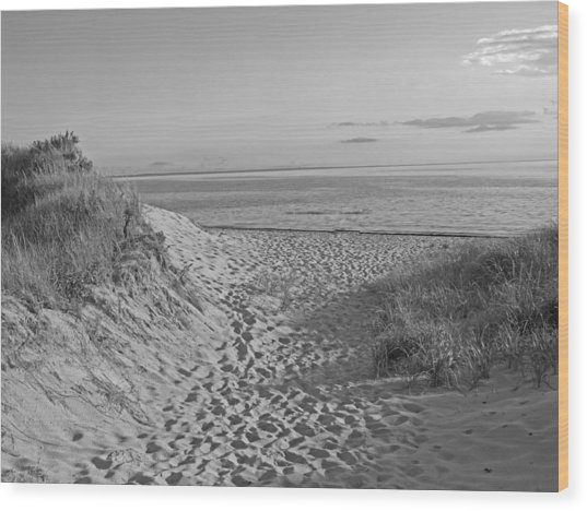 Dunes Walk Wood Print