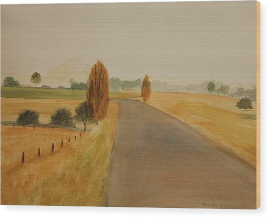Dungog Area Nsw Australia Wood Print