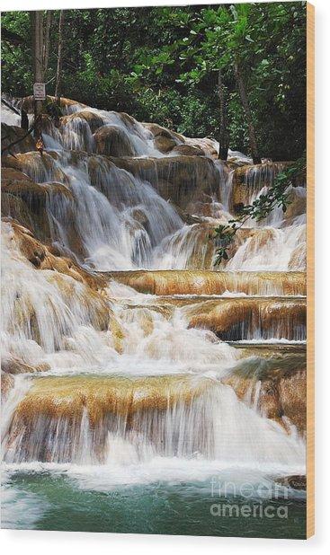 Dunn Falls Wood Print