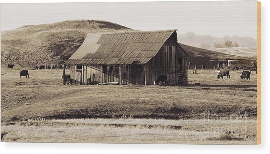 Durham California Barn Wood Print