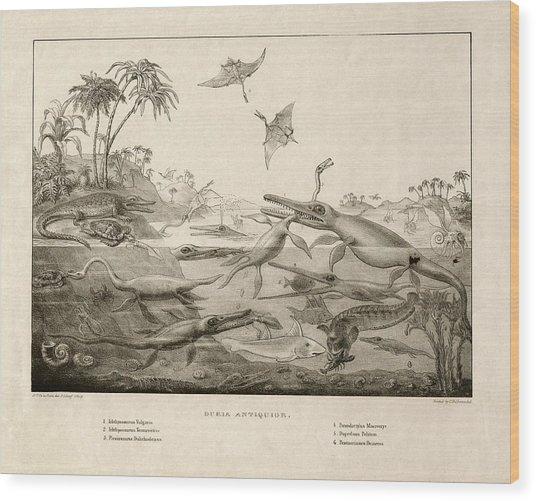 Duria Antiquior Wood Print