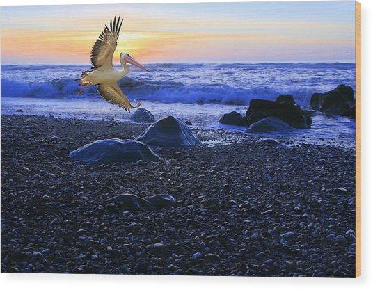 Dusk Flight Of The Pelican Wood Print