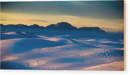 Dusk On Planet Earth Wood Print