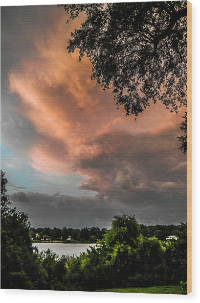 Dusk Storm  Wood Print by Christy Usilton