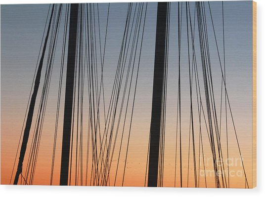 Dusky Ropes Wood Print