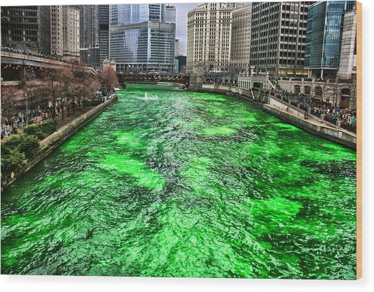 Dyeing The Chicago River Green Wood Print