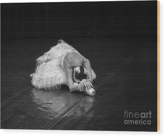 Dying Swan 4. Wood Print