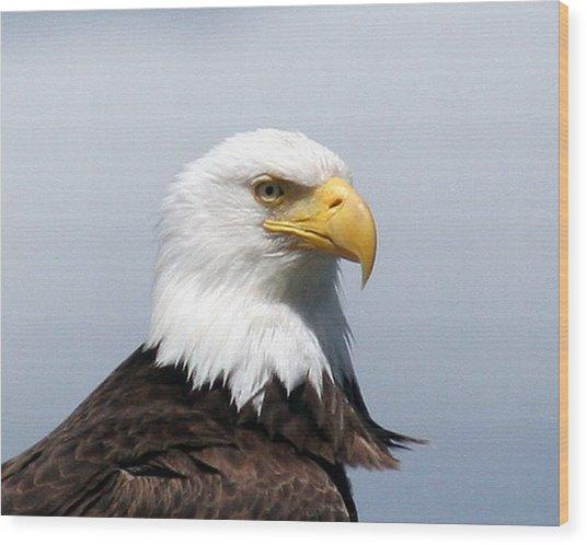 Eagle 1 Wood Print