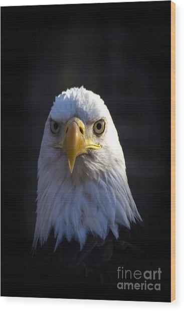 Eagle 2 Wood Print