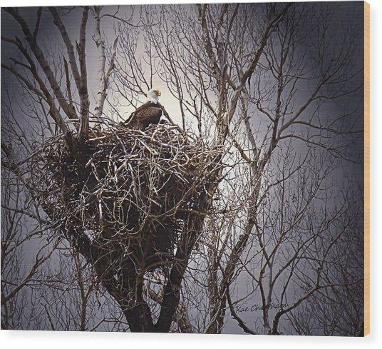 Eagle At Home Wood Print