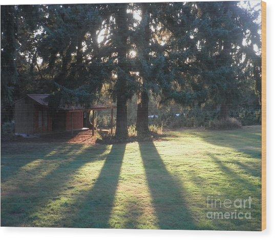 Eagle Creek Afternoon Wood Print