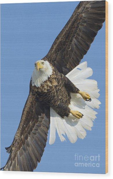 Eagle Embankment Wood Print by John Blumenkamp