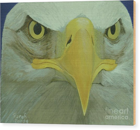Eagle Eyes Wood Print