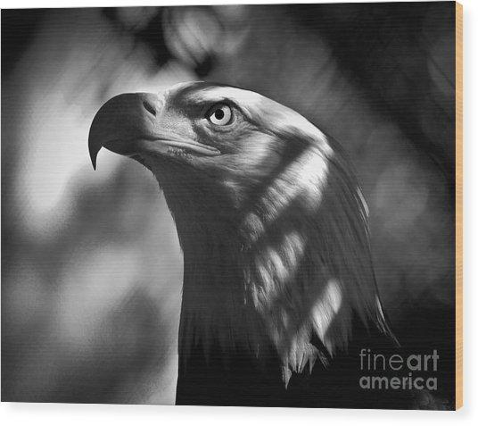 Eagle In Shadows Wood Print