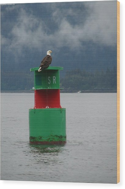 Eagle On Bouy Wood Print