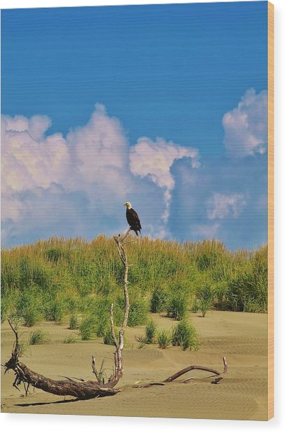 Eagle On Watch Wood Print