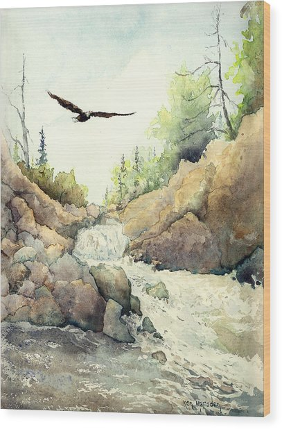 Eagle Over Dave's Falls Wood Print