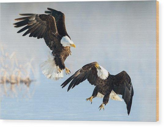 Eagle Showdown Wood Print