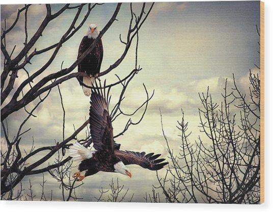 Eagle Watching Eagle Wood Print