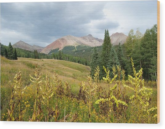 Early Autumn In The San Juans -  Mount Wilson And Wilson Peak Wood Print