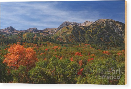 Early Fall Color Wood Print