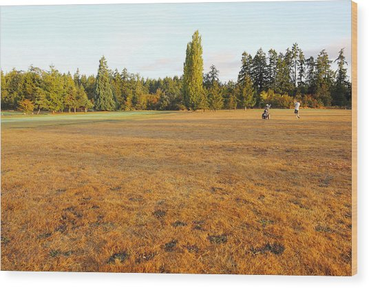 Early Fall Morning In The Rough On The Golf Course Wood Print