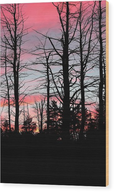 Early Fall Sky Vi Wood Print by Brian Lucia