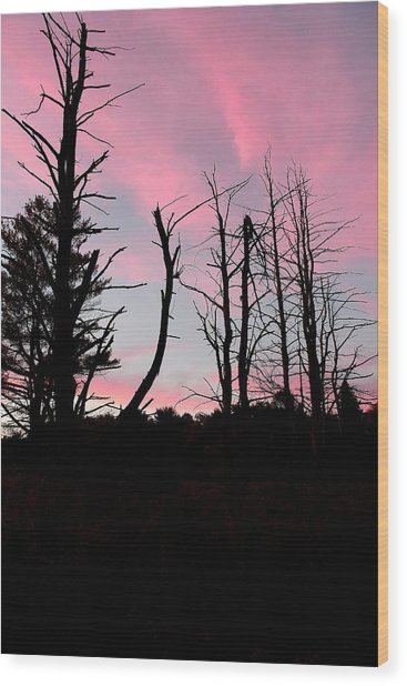 Early Fall Sky Vii Wood Print by Brian Lucia