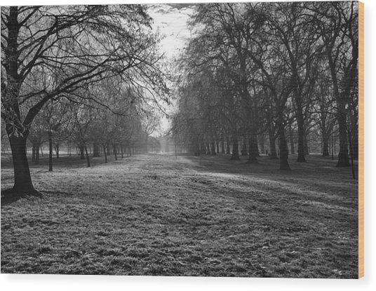 Early Morning In Hyde Park Wood Print
