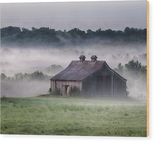 Early Morning In The Mist Standard Wood Print