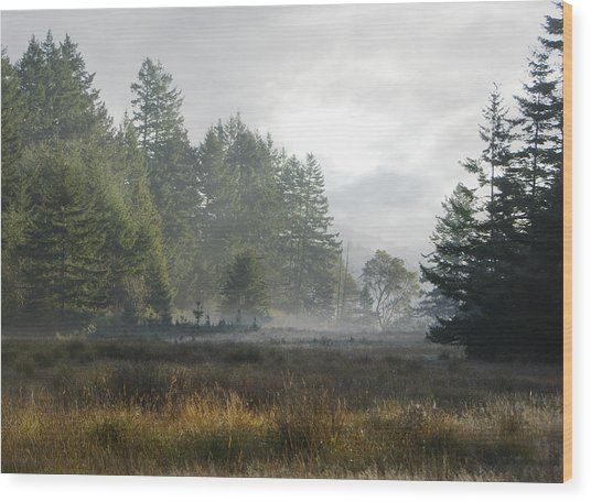 Early Morning Mist Wood Print