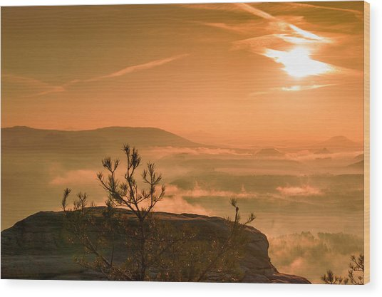 Early Morning On The Lilienstein Wood Print