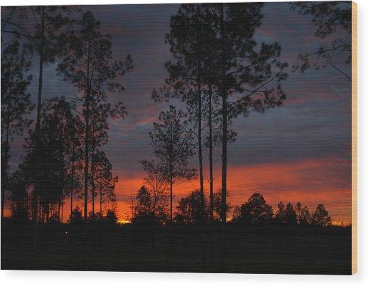 Early Sunrise Wood Print