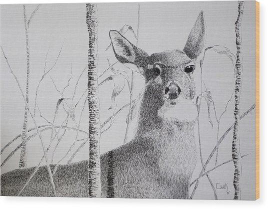Early Winters Whitetail Wood Print