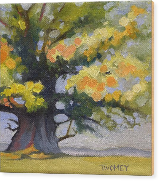 Earlysville Virginia Ancient White Oak Wood Print