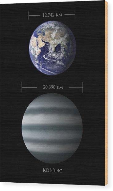 Earth And Koi-314c Comparison Wood Print