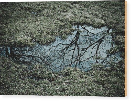 Earth And Sky Wood Print