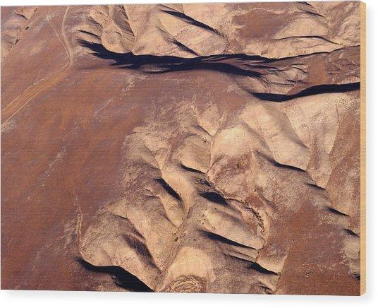 Earthmarks 3 Wood Print by Sylvan Adams