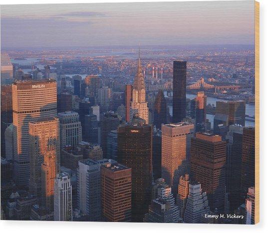 East Coast Wonder Aerial View Wood Print