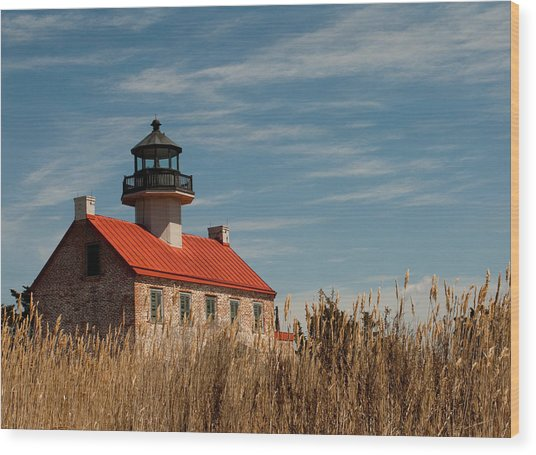 Wood Print featuring the photograph East Point Across The Marsh by Kristia Adams