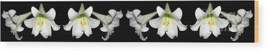 Wood Print featuring the photograph Easter Lilies Panorama by Rose Santuci-Sofranko