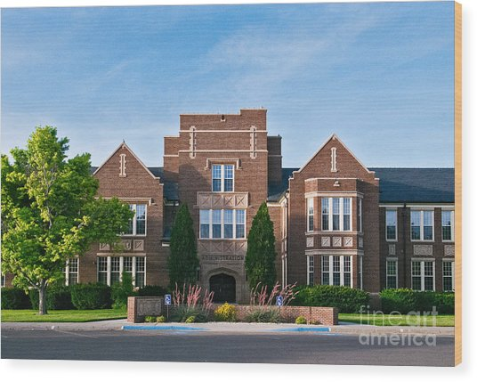 Wood Print featuring the photograph Eastern New Mexico Administration by Mae Wertz