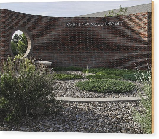 Wood Print featuring the photograph Eastern New Mexico University by Mae Wertz